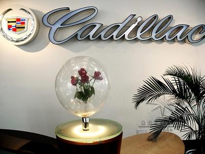 Букет из живых цветов в прозрачном шаре выглядят так недоступно и роскошно