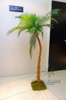Декоративная пальма для тематических вечеринок