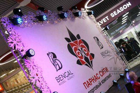 Новогоднее оформление сцены для грандиозного праздника ВСТРЕЧАЙ ЗИМУ в ТЦ Парнас Сити