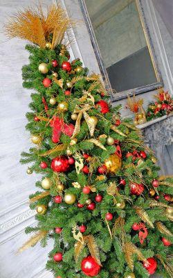 Главный атрибут Нового года и Рождества это Ёлка