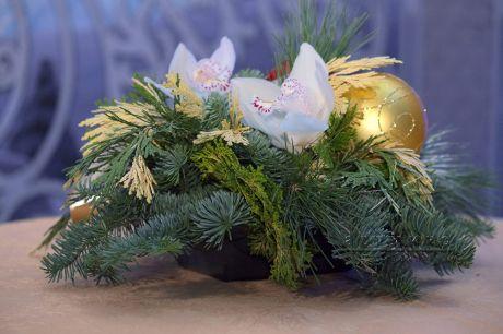 Рождественская композиция с орхидеями