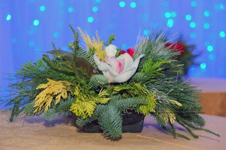 Небольшая новогодняя композиция с орхидеями