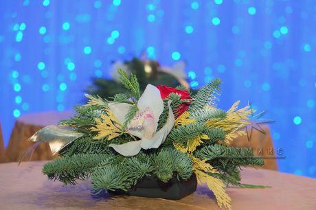 Новогодняя композиции из живой хвои с живыми орхидеями фаленопсис