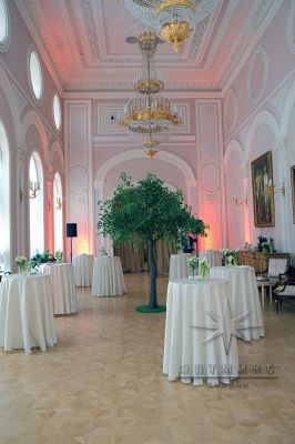 Оформление зала в Талион Империал Отеля