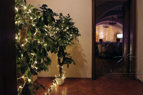 Деревья с лампочками