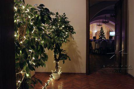 Подсветка деревьев и стен светодиодными лампочками