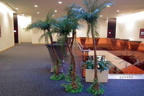 Декорации Пальмы для гавайского стиля