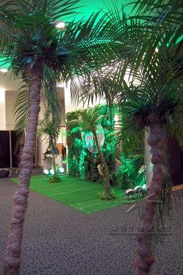Пальмы у  фотозоны