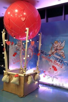 Романтический праздник на Воздушном шаре_2