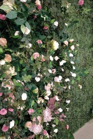 Фотозона из самшита с цветами и зеленью_3
