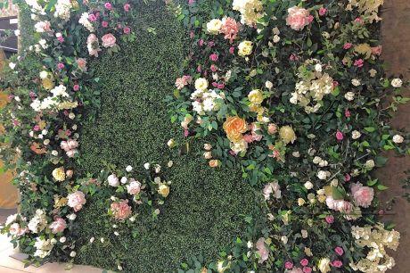 Фотозона из самшита с плетистой розой_2