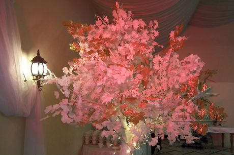 Белое дерево с подсветкой