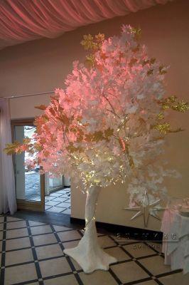 По периметру зала - белые деревья с золотыми кленовыми листьями