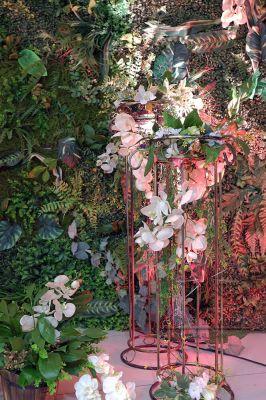 Декорации у фотозоны - высокие стойки с цветами