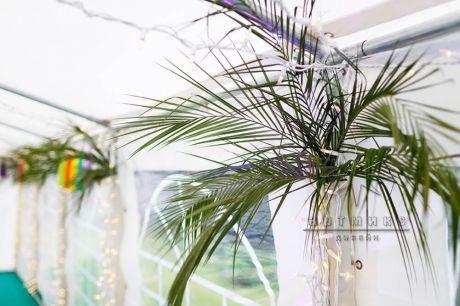 В шатре стены оформлены  листьями пальмы и светодиодной подсветкой