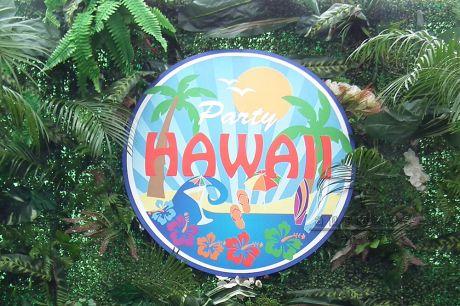 Круглый баннер party hawaii
