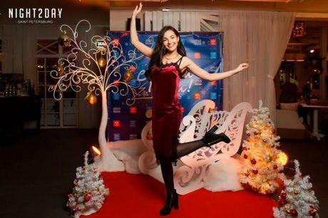 Новогодгяя фотозона Сани